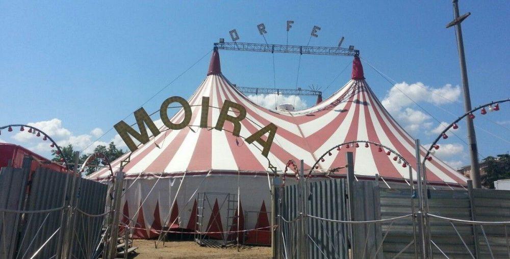 Gallarate: il circo di Moira Orfei bloccato dal #coronavirus