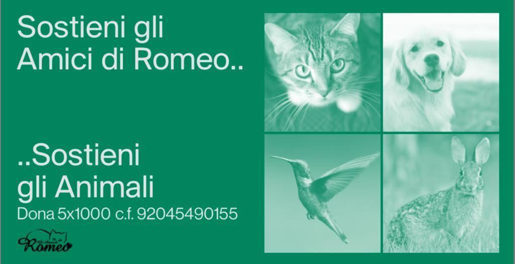 Gli amici di Romeo Onlus